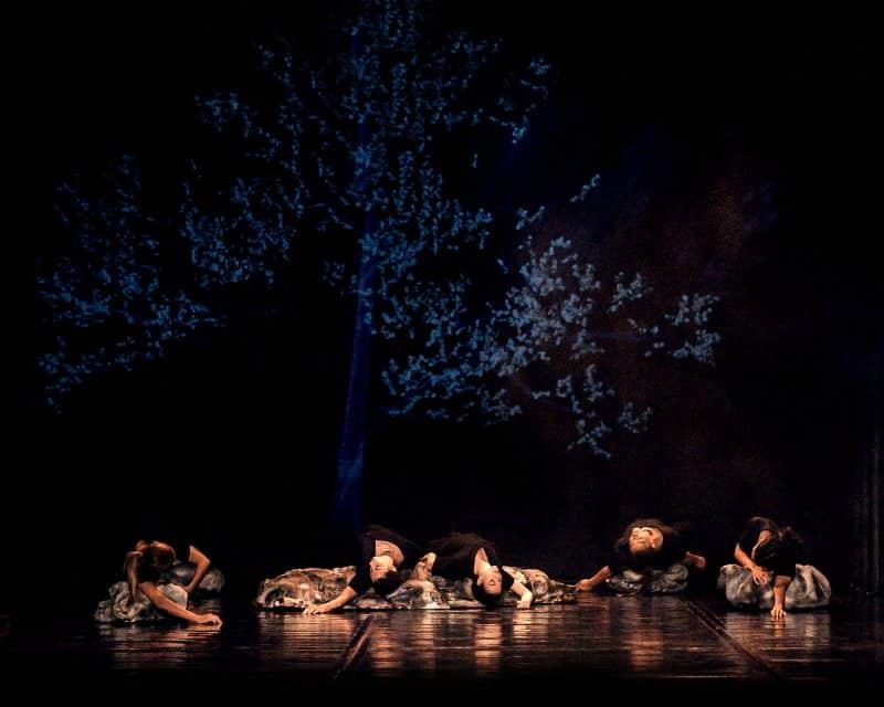 artius-dance-theatre-jasmin